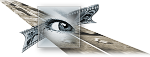 Hochzeitsfotograf-Logo